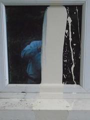 366 - 269 (ttelyob) Tags: 366 366269 splash paint window picmonkey