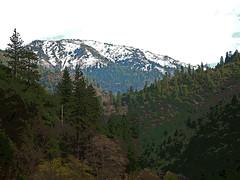 20110123 Graeagle View