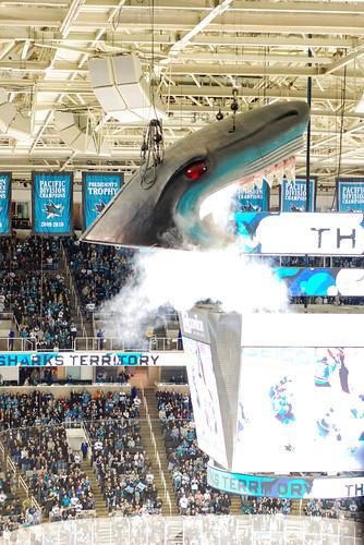 Sharks v. Wild, 01.22.11