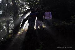 True friendship (sheikh choton) Tags: light tree kids ray sylhet bangladesh frienship nikond90