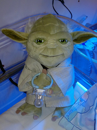 Yoda: guardian of the pacifiers