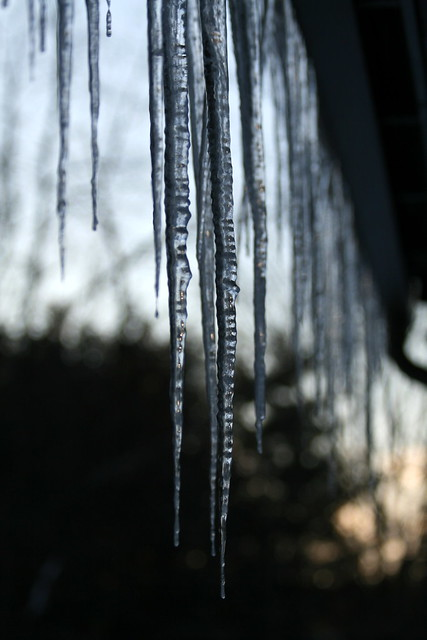 Icicles hanging at sunset