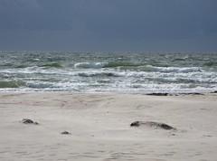 09 Amerika (Insel Amrum) Tags: travel germany deutschland reisen urlaub nordsee wattenmeer amrum amrumweb