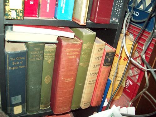 Bookshelves 17