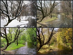 four seasons (second version) (green_lover (your COMMENTS are welcome!)) Tags: seasons park winter spring autumn river trees żyrardów poland collage concordians mygearandme fourseasons