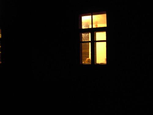 Тёплый свет