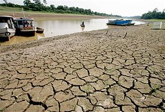 Amazon at risk due to droughts