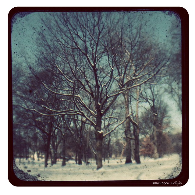 winter TtV