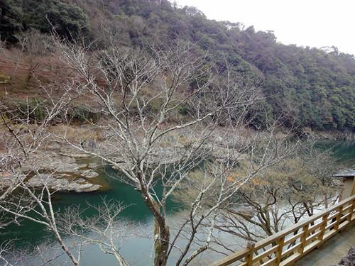 kyoto arashiyama 4_1