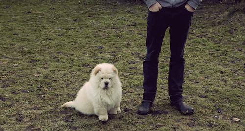 Samson & his owner