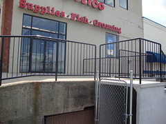 Commercial 9 riser with custom pipe rails around loading dock
