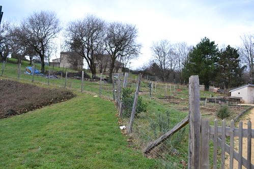 Lyon jardins potagers 30 (Pause jardin)