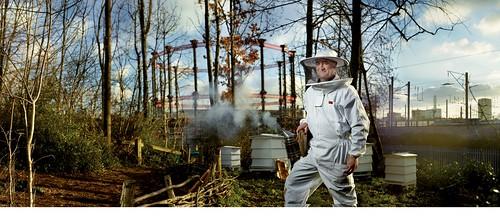Urban Bees' Revolution