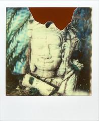 Angkor Wat in my Aquarium