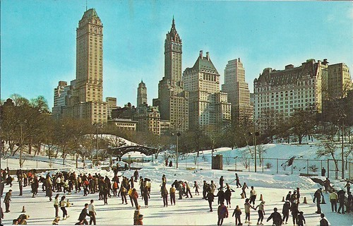 Winter In Central Park, NYC, NY (Postcard)