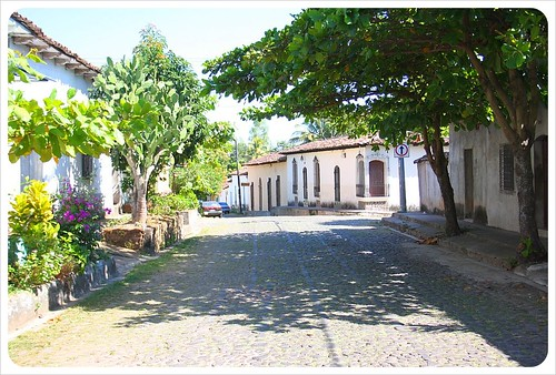 Suchitoto Tree-lined street