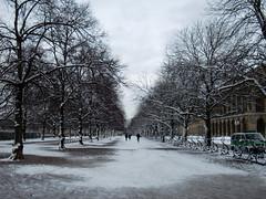 my favourite winter photo mnchen (sven & nova) Tags: street city trees winter people snow cold germany munich europe wind