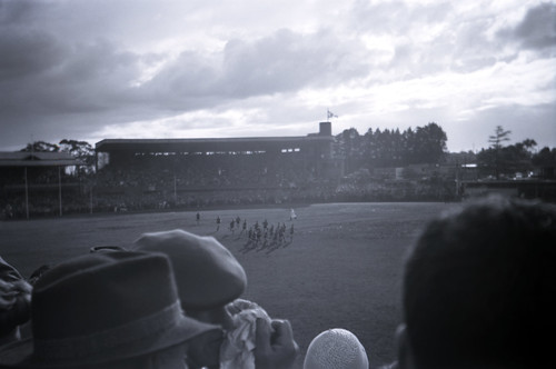 196104  114 Glenferrie Oval