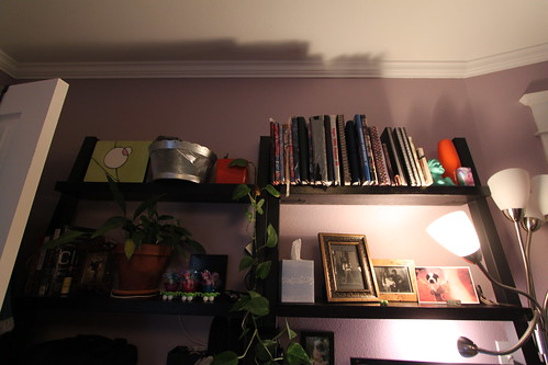 Shelf detail