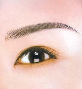 Eyebrow4