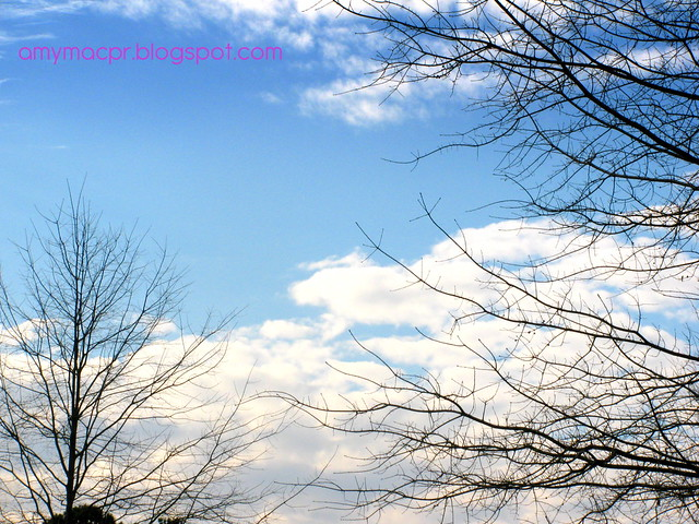 Atlanta Spring Sky