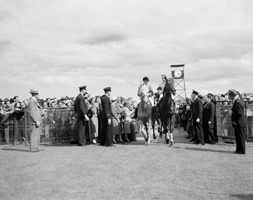 1952 Melbourne Cup winner