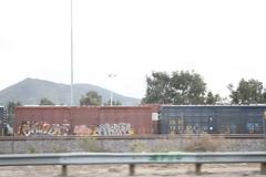 (Pastor Jim Jones) Tags: graffiti kfc boxcar freight okay reez