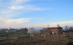 Orti regolamentati febbraio 2011