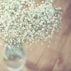 baby's breath (MarianneLoMonaco) Tags: flowers texture nature square babies dof breath vase marianne bouquet 952 lomonaco