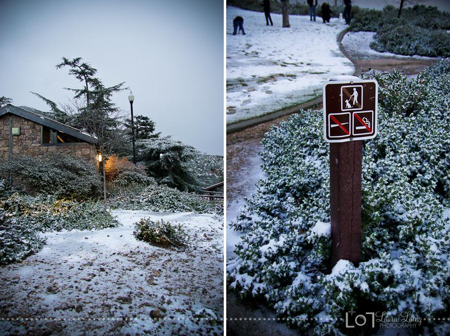 snow2011-5