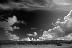 Dune tune (Guido Havelaar) Tags: bw holland beach dunes schwarzweiss pretoebranco noirblanc 黑白色 neroeblanco ブラックホワイト чорныбелы