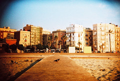barcelona beach (lomokev) Tags: barcelona sea building beach water yellow buildings holga xpro lomography crossprocessed xprocess sand vignetting vignette goldenhour deletetag holgabc lomographyxpro200 roll:name=100701holga35lomoxpro200 file:name=100701holga35lomoxpro200004