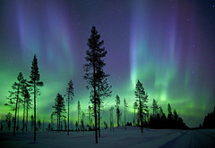 kiruna aurora (antonyspencer) Tags: norway night finland stars landscape lights sweden aurora lapland scandinavia northern borealis earthandspace top20aurora top20aurora20 bestnewcomer competition:astrophoto=2012