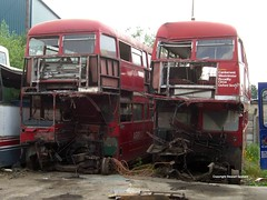 Routemasters at Wigley's (MCW1987) Tags: bus london yard transport routemaster scrap barnsley arriva aec rml dismantlers
