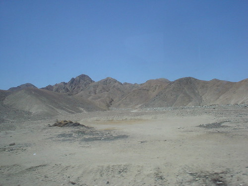 20100315019