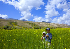 Le bonheur est dans le pr - Kyrgyzstan (Eric Lafforgue) Tags: flowers two people mountains boys field childhood yellow horizontal kids youth clouds standing children landscape person togetherness asia exterior horizon bluesky hills together cap pasture innocence fields centralasia kyrgyzstan twopeople humanbeing nomads colorphoto headgear mountainous kyrgyzrepublic kirghizistan kirgistan lookingatcamera twopersons waistup 9479 kirghizstan kirgisistan  nomadiclifestyle   quirguizisto jamanechkijailoo