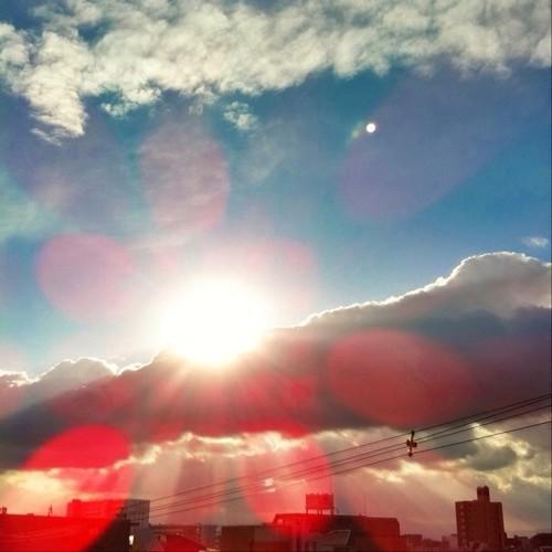 今日の写真 No.117 – 元旦にInstagramへ投稿した写真(2枚)/iPhone4 + Photo fx