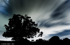 Hey Diddle Diddle  (Lockie Cooke) Tags: longexposure trees dog moon night clouds cat canon cow farm spoon qld fiddle scape jumped moggill 40d 1740f4lusm lockiecooke