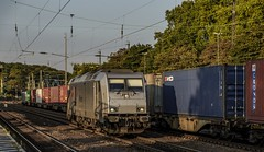 1618_2016_09_23_Köln_West_RHC_1285_116_Lz_Köln_Süd_Rpool_6186_101_bls_cargo_mit_Containerzug_Ehrenfeld (ruhrpott.sprinter) Tags: ruhrpott sprinter deutschland germany nrw ruhrgebiet gelsenkirchen lokomotive locomotives eisenbahn railroad zug train rail reisezug passenger güter cargo freight fret diesel ellok kölnwest als db mrcedispolok nxg nationalexpress lbl locon nrail pcw rhc sbbc siemens sncb vtgd es64p001 es64f4 0272 127 146 155 185 186 189 260 275 408 482 620 1261 1275 6127 6146 6189 2275 eurosprinter gravita dosto chemion schienen walzzeichen outdoor logo natur graffiti