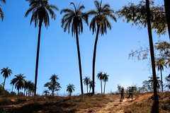 I will come back (Italo do Valle) Tags: saudade brazil minas gerais djavan landscape travel kids nature sky trees storytelling