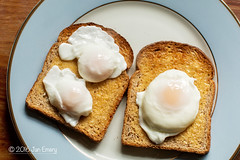 101/116 Food for Free (Jamarem) Tags: egg eggs chicken hen bantam toast wholemeal food canoneos70d 50mml octoberchallenge