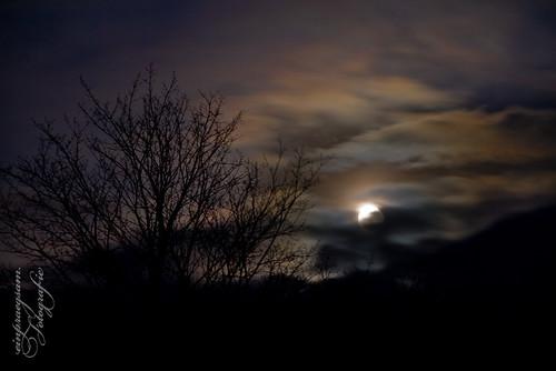 Vollmondnacht im Winter in Münchenlohra