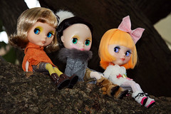 Doll party in Tamsui
