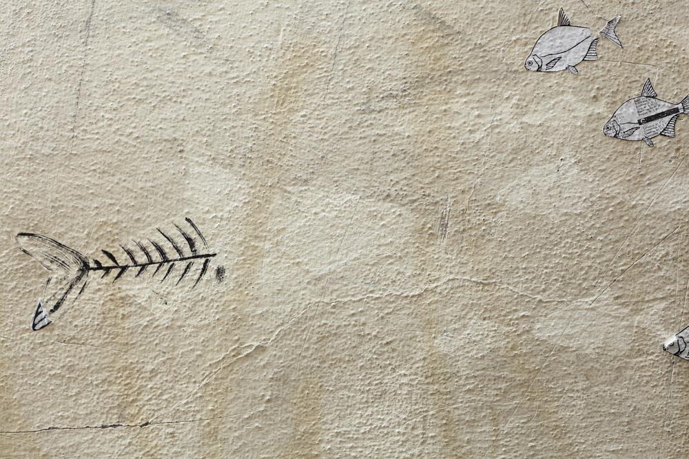 street art in Český Krumlov 2