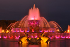 Pink Buckingham (Seth Oliver Photographic Art) Tags: chicago illinois nikon midwest cityscapes grantpark nightshots theloop buckinghamfountain pinoy downtownchicago wbez urbanscapes longexposures chicagoist d90 nightexposures pinkfountain 20secondexposure manualexposure sooc chicagolandmarks chicagoicons setholiver1 aperturef160 18105mmnikkorlens tripodmountedshot nocturneimages remotetriggeredshot