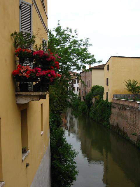 窓辺の花と川のフリー写真素材
