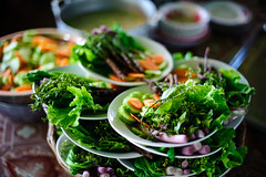 The Taste of Diversity in Phnom Penh: Top Restaurants