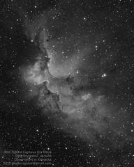 NGC7380 in Cepheus (Oleg Bryzgalov) Tags: astrophoto cepheus ngc7380 Astrometrydotnet:status=solved Astrometrydotnet:version=14400 Astrometrydotnet:id=alpha20110151809263