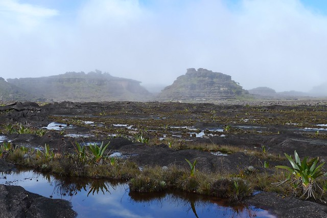 Summit of Roraima