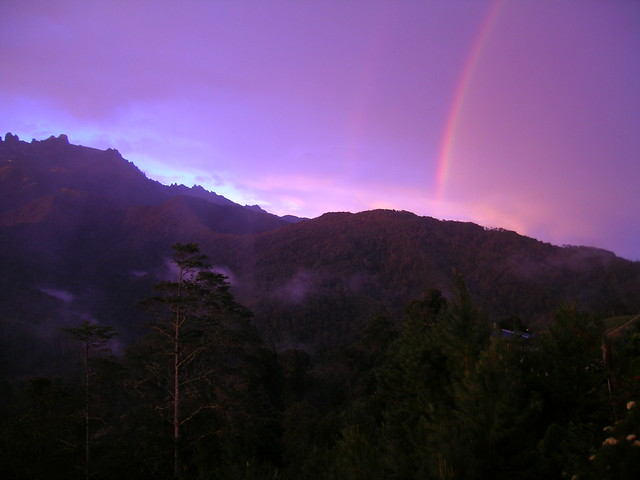 Forest: Kinabalu Park, sunset mit rainbow!